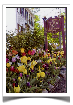 The Tuck Inn of Rockport, Massachusetts is adorned with multiple flower gardens throughout the grounds. Be sure to come stay early in the spring to catch our show of Tulips as we plant over 1,000 of them in the front of the Inn every year. Photo by Les Bartlett.